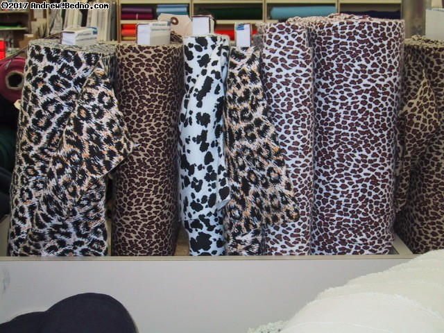 Animal prints. (click for next photo)