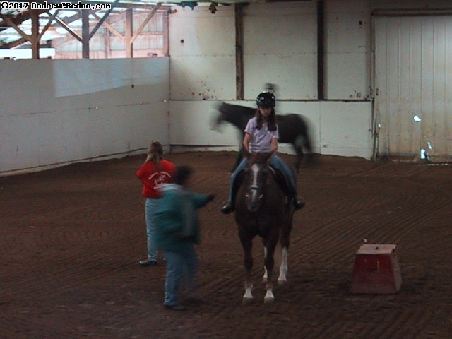 Horseback riding lessons. (click for next photo)