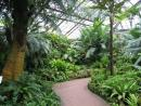Lincoln Park Conservatory. (click to zoom)