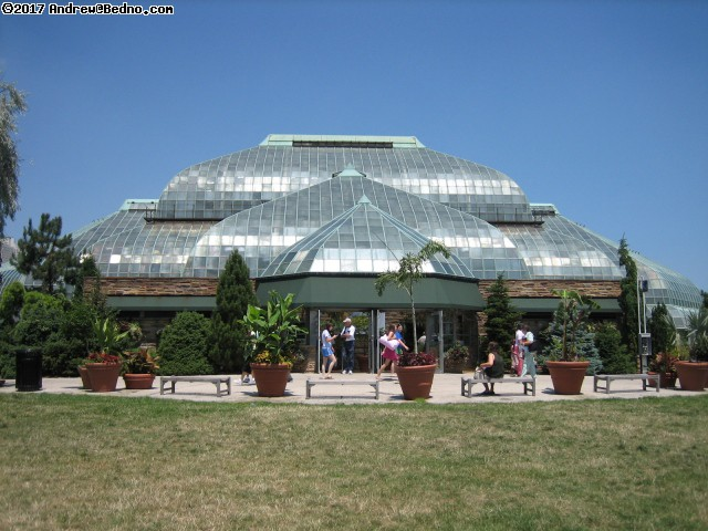Lincoln Park Conservatory. (click for next photo)