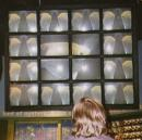 1997. Video wall in Shedd Aqaurium (Andrew's work). (click to zoom)