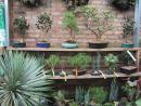 Gethsemane Garden Center. (click to zoom)