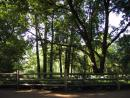 Lincoln Park Zoo (click to zoom)