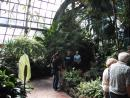 Lincoln Park Conservatory (click to zoom)