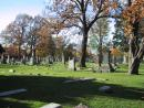 Graceland Cemetery: Broad view. (click to zoom)