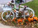 Chicago Ghost Bikes tour. (click to zoom)